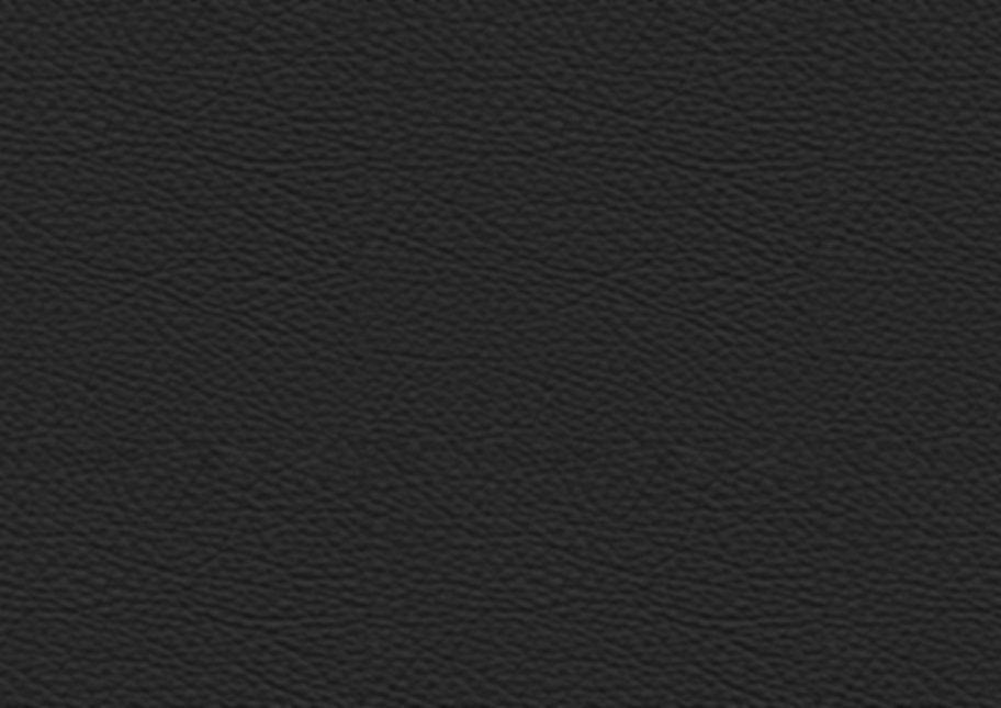 Leather02.jpg