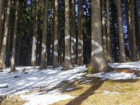 Die Berglicht-Wanderung im Oktober könnte uns schon etwas Schnee bescheren