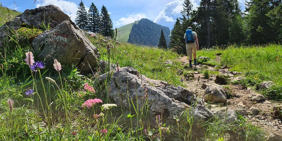 Berglicht-Wanderung am Mittwoch im August