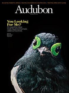 Audubon cover.jpg