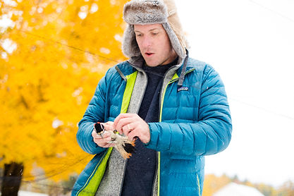 Bird Catching 20181017_0026.jpg