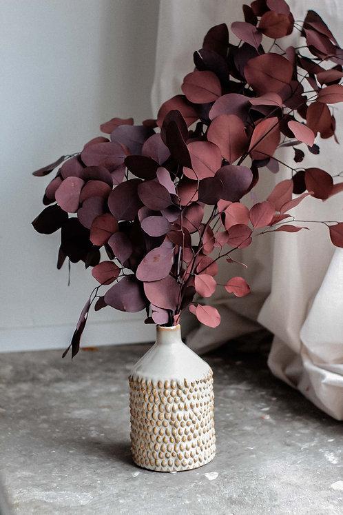 Bordeaux Eukalyptus Trockenblume