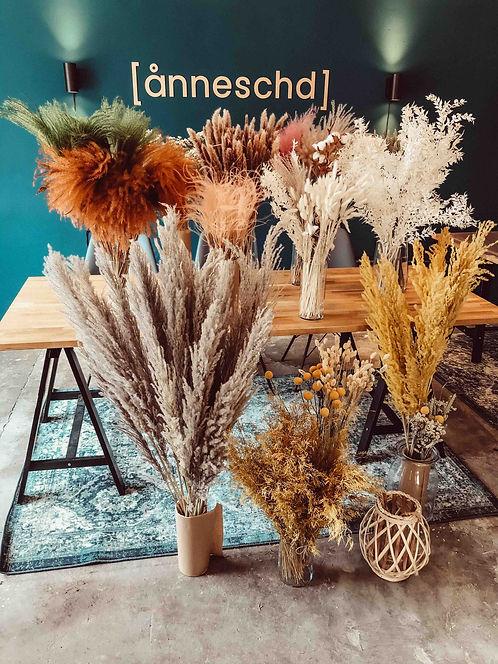 trockenblumen-kaufen-driedflowers-annesc
