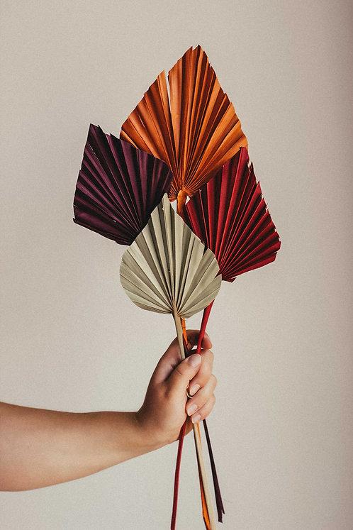 Herbstfarben Palmblatt Speer Trockenblume