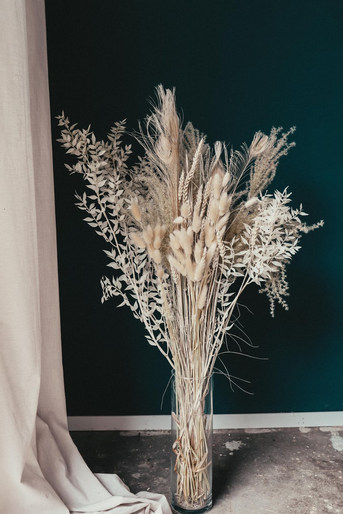 Weiße Trockenblumen Händler