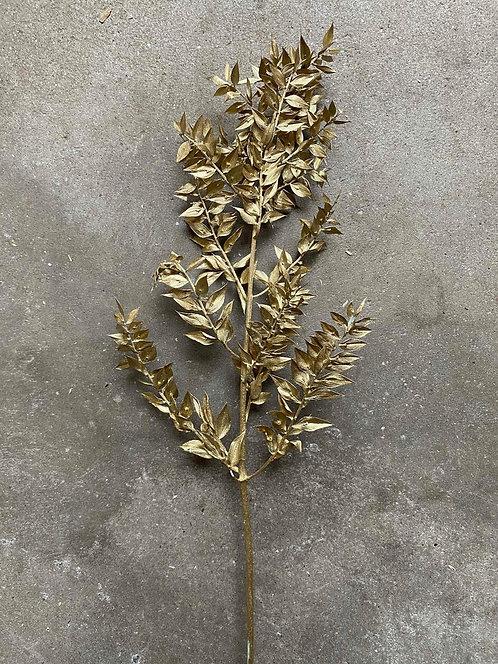 Gold Metallic Ruscus