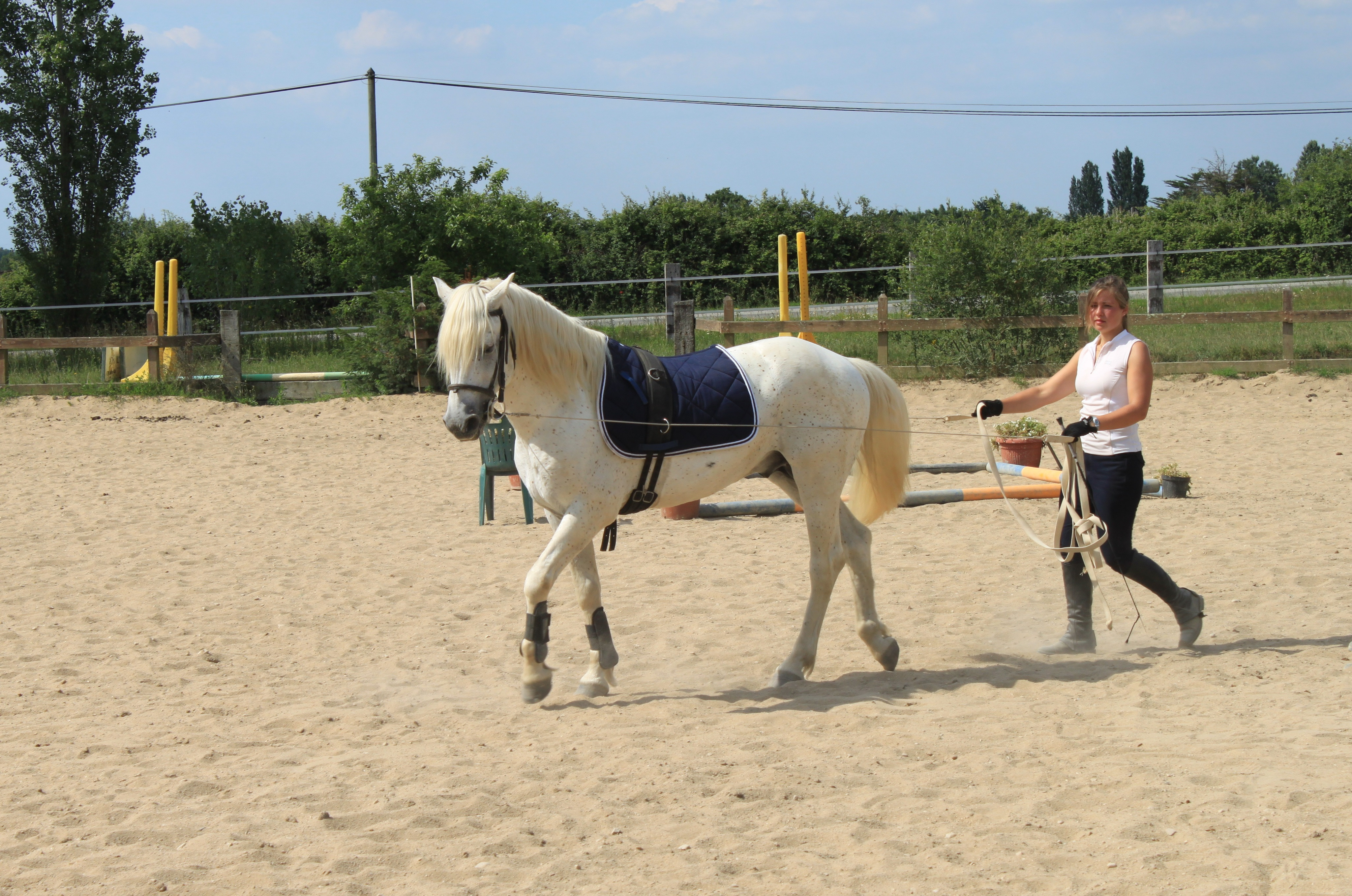 STAGE CHEVAL 11/17 ANS - 3 jours