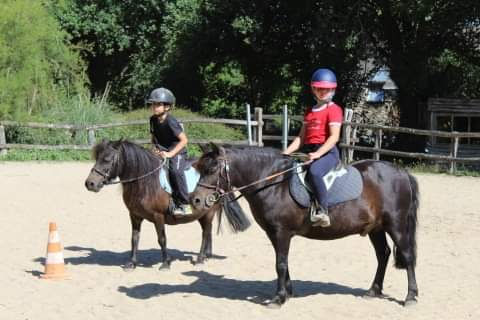 STAGE PONEY 3/10 ANS - 4 matinées