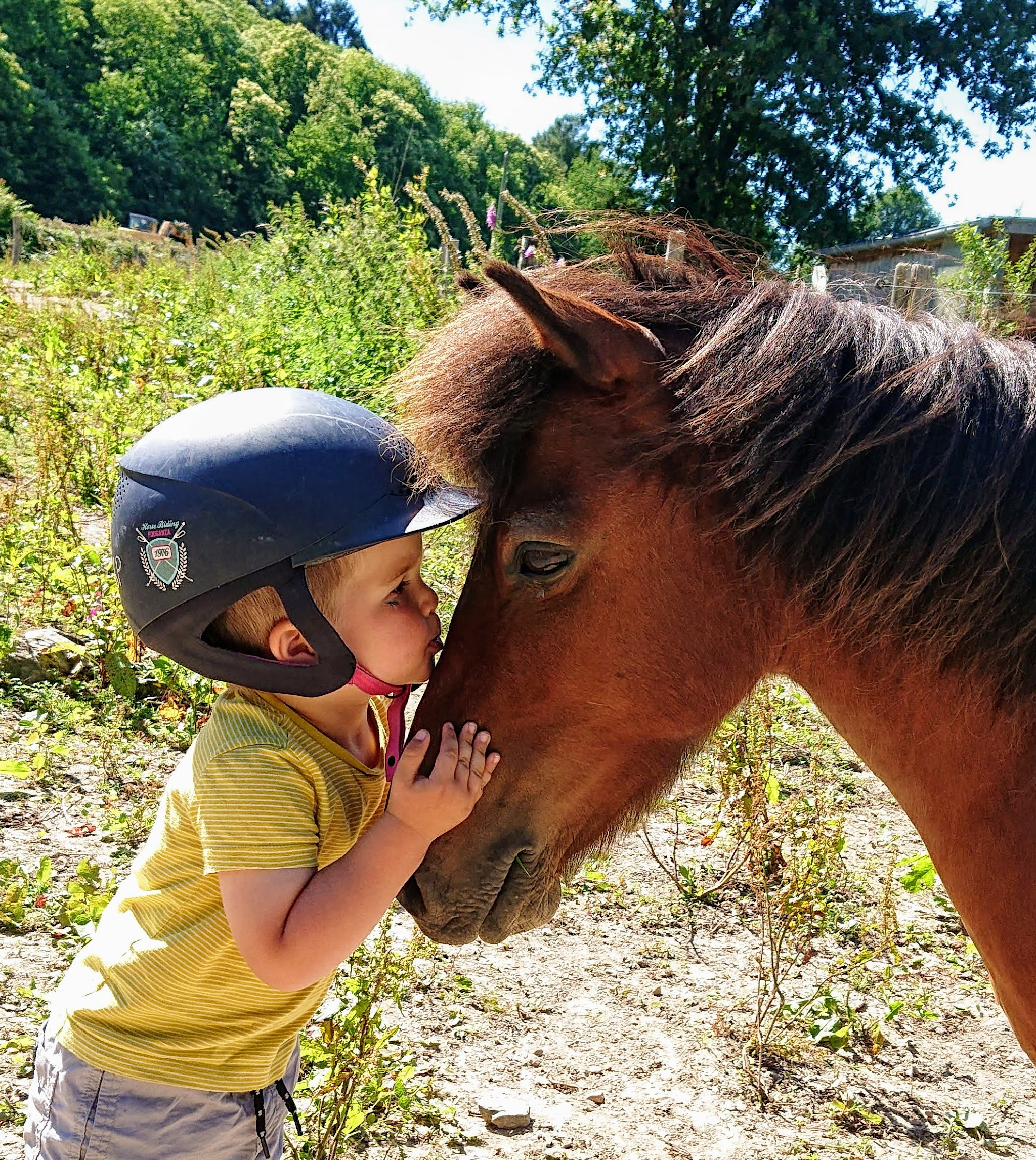 STAGE PONEY 3/10 ANS - 2 jours