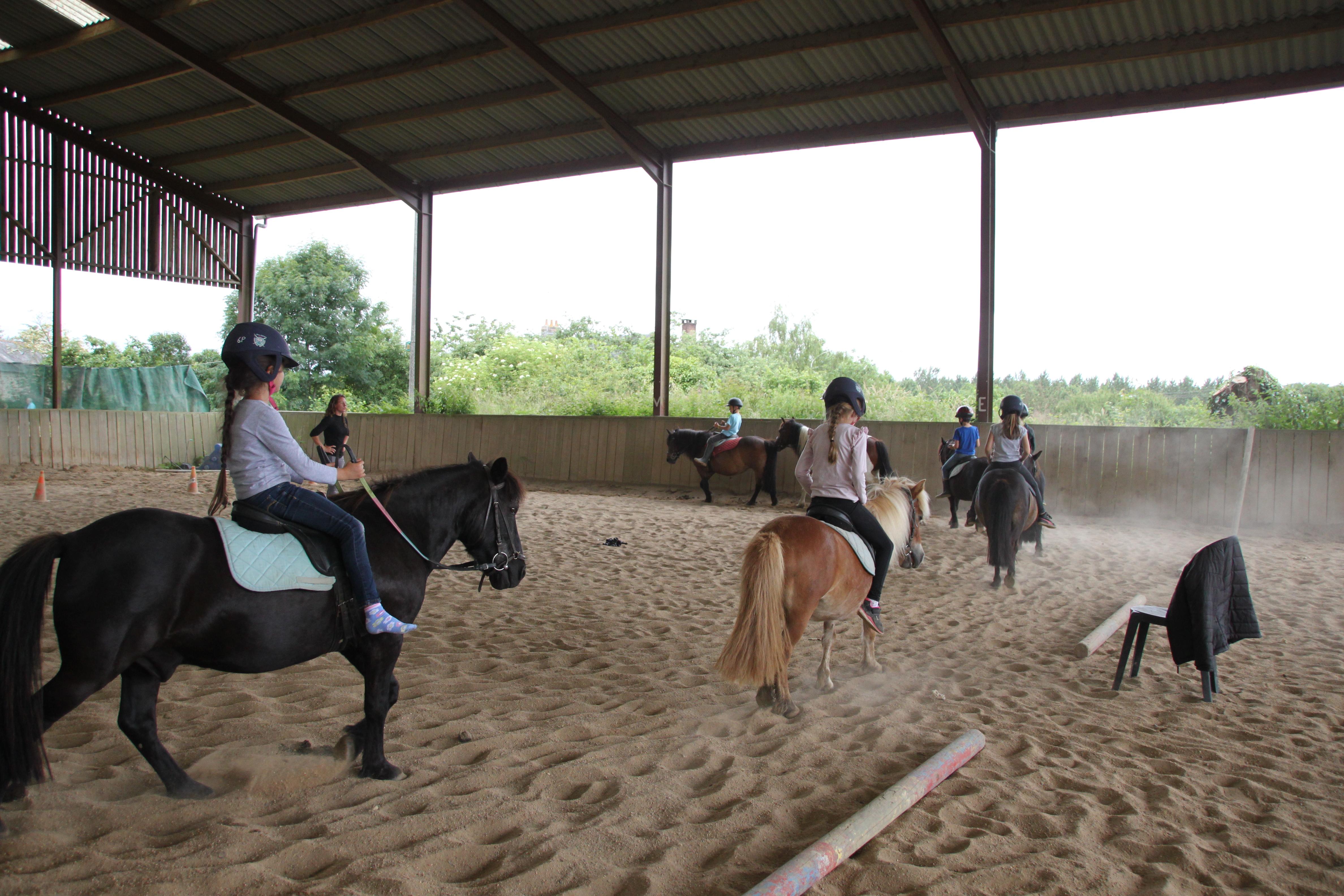 Initiation poney