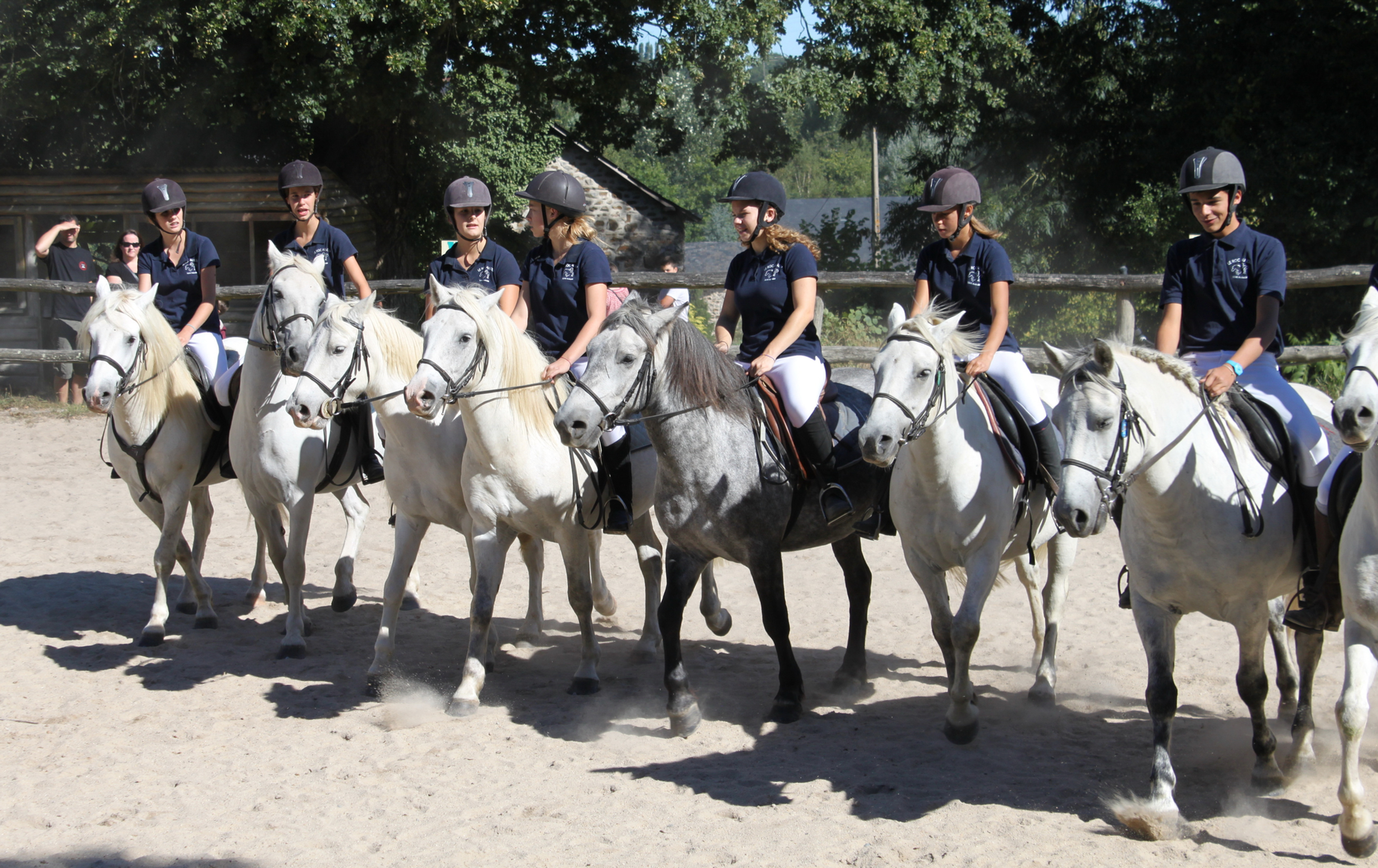 STAGE CHEVAL 11/17 ANS - 4 jours