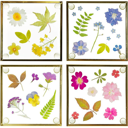 Pressed Flower Glass Coaster set