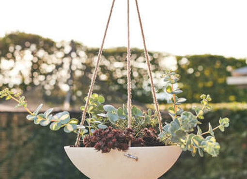 Orchard Hanging Planter