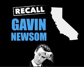 Recall Newsom.PNG
