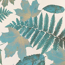 papier-peint-feuilles-foueres-chene-pyrenees-tendances