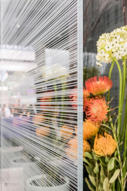 Omni Glass Pattern & Glass Printing