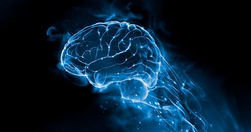 mapeamento-cerebral-1024x538.png