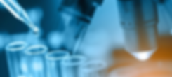 evento-71085-banner.png