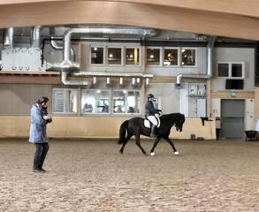 Kolme päivää Susanne von Dietzen valmennuksessa Rider in Motion- tapahtumassa