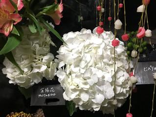 本日の花部屋