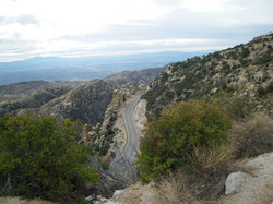 Mont Lemmon