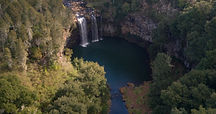 Dangar Falls Dorrigo waterfall way