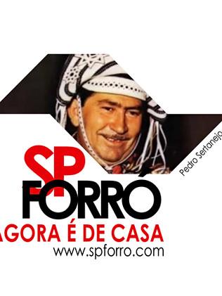 SPForro-Camisetas-1.jpg
