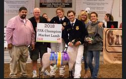 2018 FFA Champion Lamb