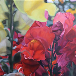 Red & Yellow snapdragons 100dpi.jpg