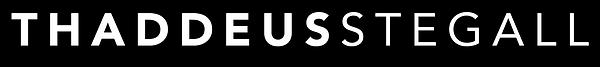 StegallSpeaks_Alt Logo.png