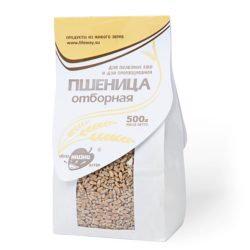 Пшеница отборная, зерно для проращивания 500гр пачка Образ Жизни