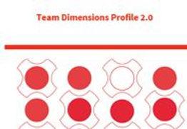 Team Dimensions Profile.JPG