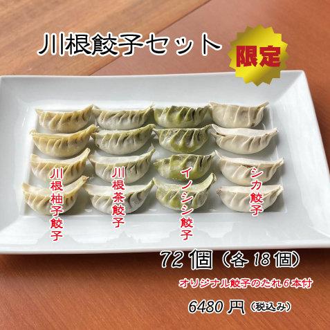 川根餃子セット72個(各18個)
