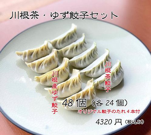 川根茶・ゆず餃子セット48個(各24個)