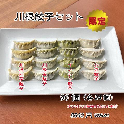 川根餃子セット96個(各24個)