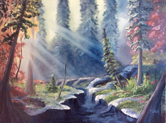 Lit de rivière en forêt