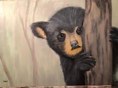 Petit ourson noir