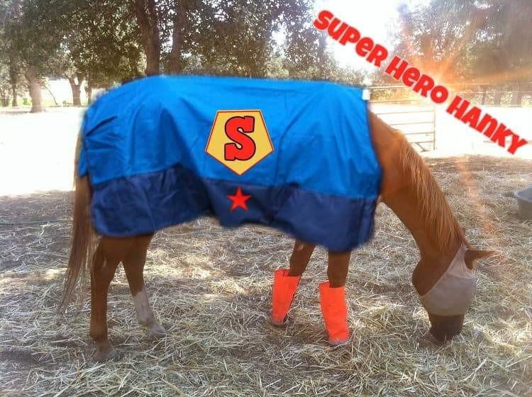 Hanky's Halloween Super Hero costume
