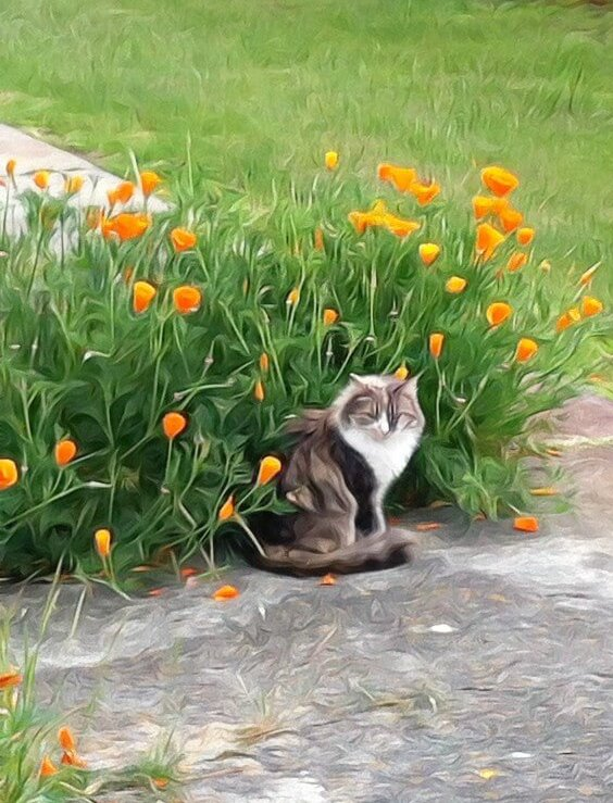 She loves to be in the flowers
