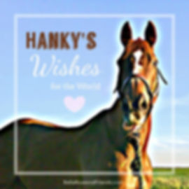Hanky's Wishes for the World Kid's Story