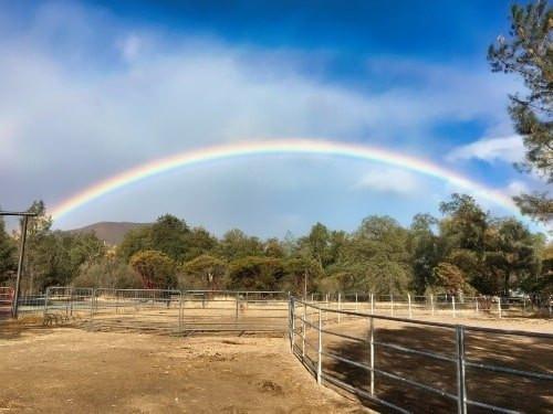Full rainbow in the blue sky