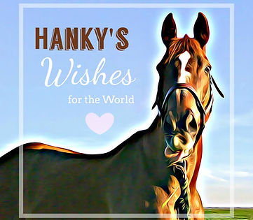 Hanky's Wishes for the World Kids Story Cover
