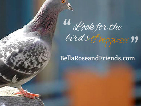 Look for the Birds of Happiness