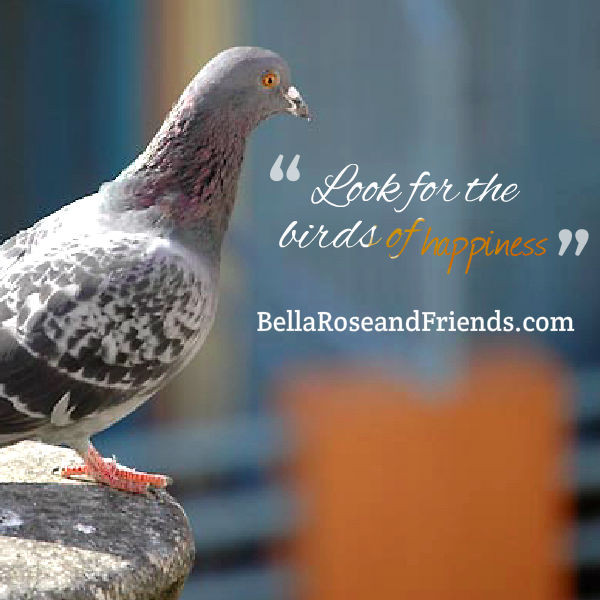 Look for the birds of happiness - BellaRoseandFriends.com