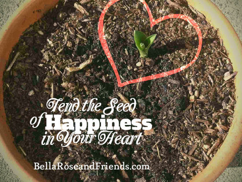 Tend the Seed of Happiness in Your Heart