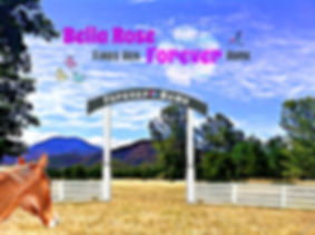 Bella Rose Finds Her Forever Home - Bella Rose & Friends Short Story for Kids