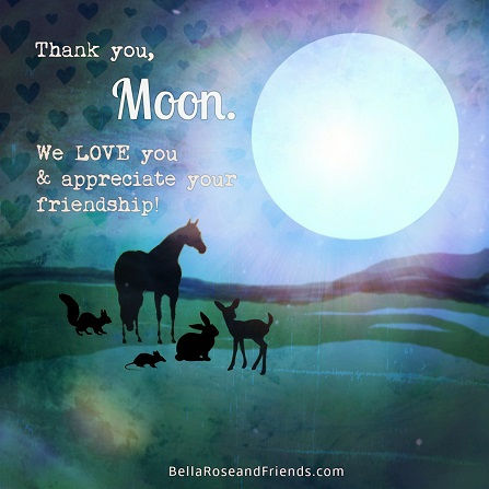 Animals together under the Moon saying Thank You
