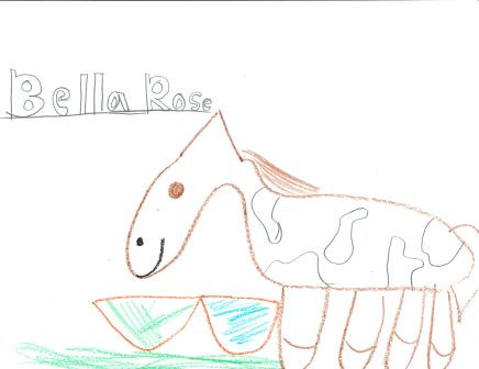 kids drawing of Bella Rose the horse