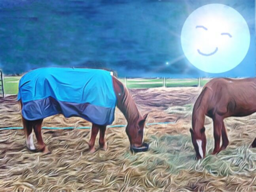 Two horses eating under the smiling full moon.