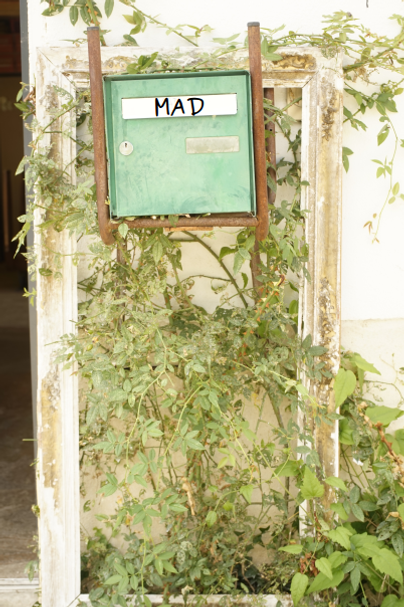 BAL + verdure + mad.png